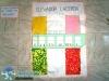 014-aniversario-de-salvador-2012