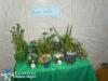 013 Meio Ambiente 2012