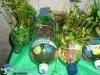 024 Meio Ambiente 2012