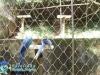 011-zoo-2011