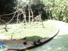 012-zoo-2011