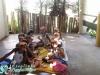 015-zoo-2011